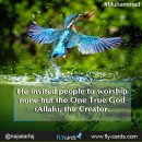 He invited people to worship none but the One True God (Allah), the Creator. #Muhammad