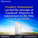 Prophet Muhammad carried the message of tawheed (oneness & submission) to the one true God allah