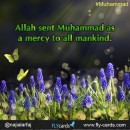 Allah sent Muhammad as a mercy to all mankind.