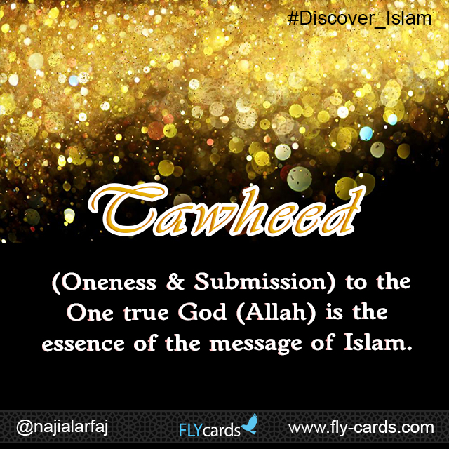 'Tawheed' (Oneness & Submission) to the One True God (Allah) is the essence of the message of Islam.