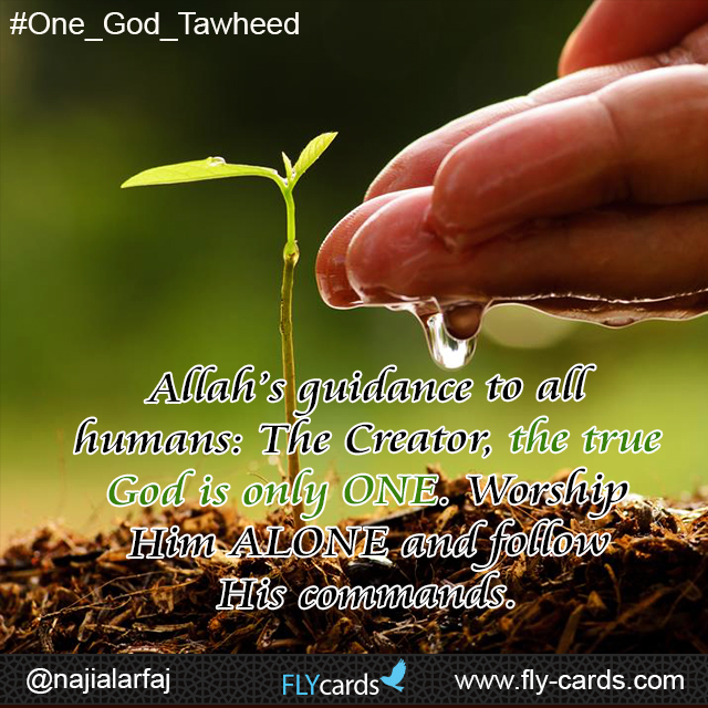 Allah's guidance to all humans: The Creator, the true God is only ONE. Worship Him ALONE and follow His commands.