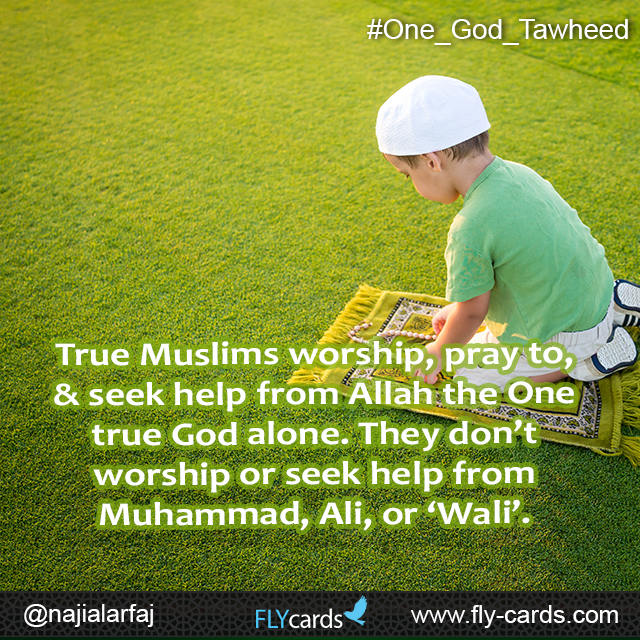 True Muslims worship, pray to, & seek help from Allah the One true God alone. They don't worship or seek help from Muhammad, Ali, or 'Wali'.