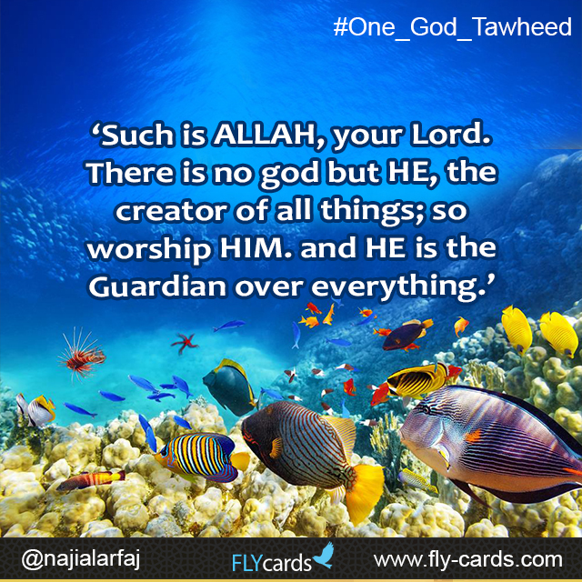 'Such is ALLAH, your Lord. There is no god but HE, the creator of all things; so worship HIM. and HE is the Guardian over everything.'