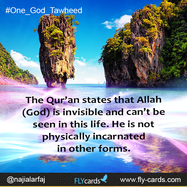 The Qur'an states that Allah (God) is invisible and can't be seen in this life. He is not physically incarnated in other forms.