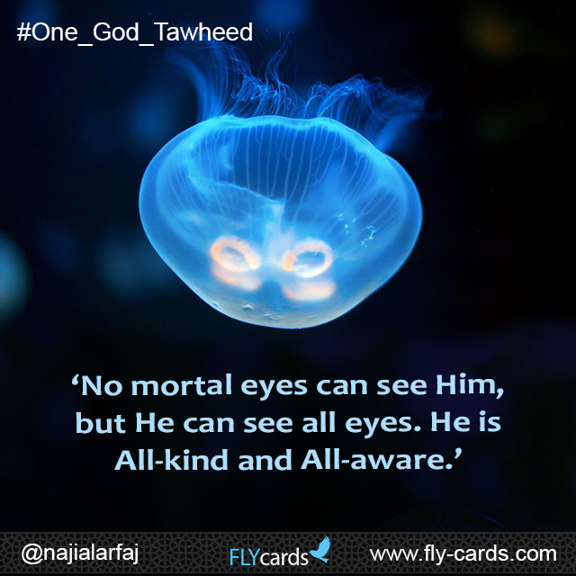 'No mortal eyes can see Him, but He can see all eyes. He is All-kind and All-aware.'