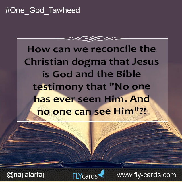 "How can we reconcile the Christian dogma that Jesus is God and the Bible testimony that ""No one has ever seen Him. And no one can see Him""?!"