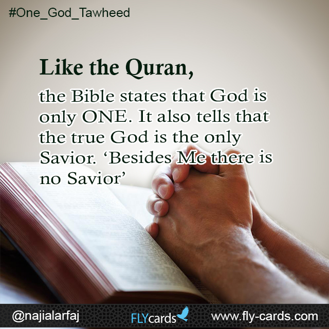 Like the Quran, the Bible states that God is only ONE. It also tells that the true God is the only Savior. 'Besides Me there is no Savior'