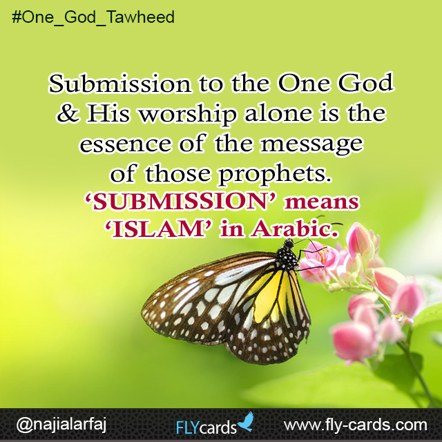 Submission to the One God & His worship alone is the essence of the message of those prophets.  'SUBMISSION' means 'ISLAM' in Arabic.