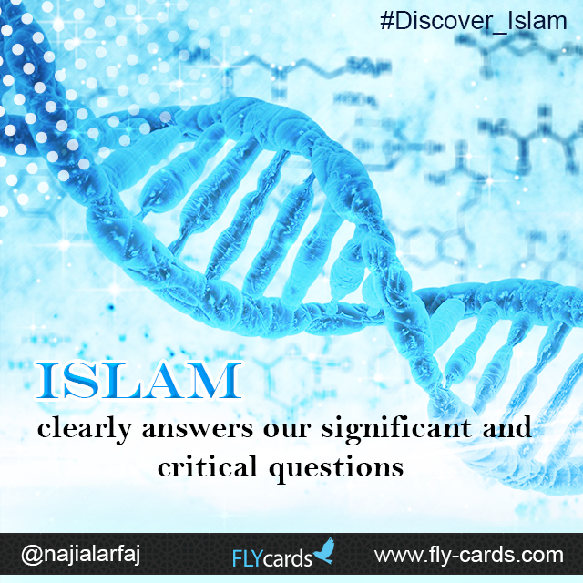 Islam clearly answers our significant, and critical questions.