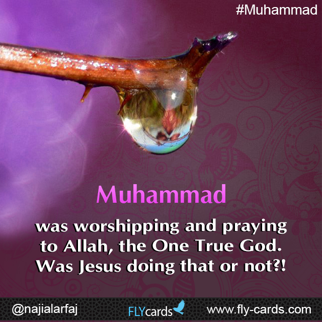 Muhammad was worshipping and praying to Allah, the One True God. Was Jesus doing that or not?!