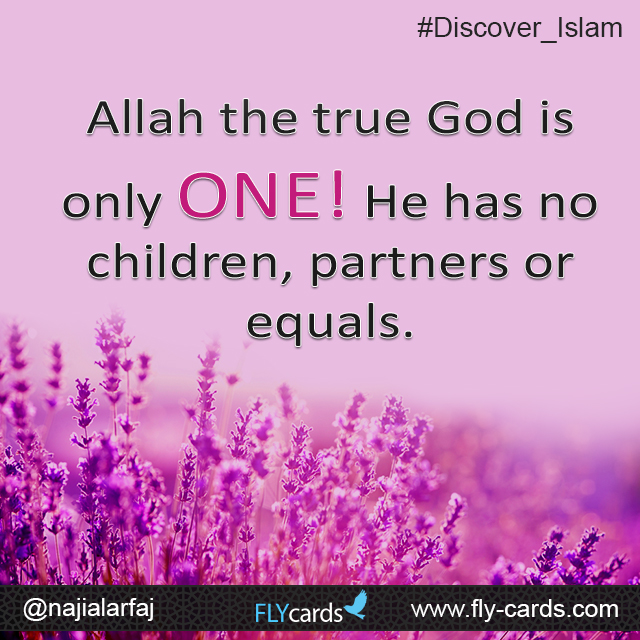 Allah the true God is only ONE! He has no children, partners or equals.