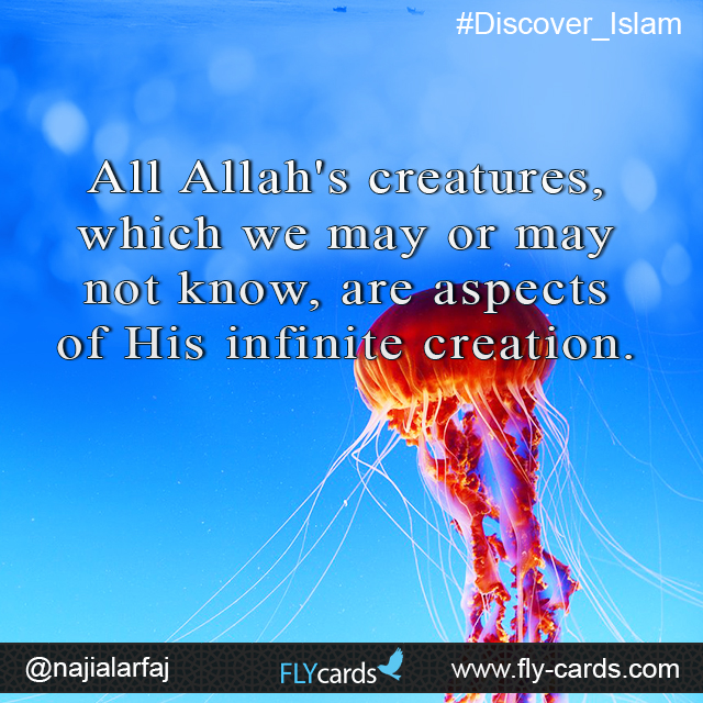 All Allah's creatures, which we may or may not know, are aspects of His infinite creation.
