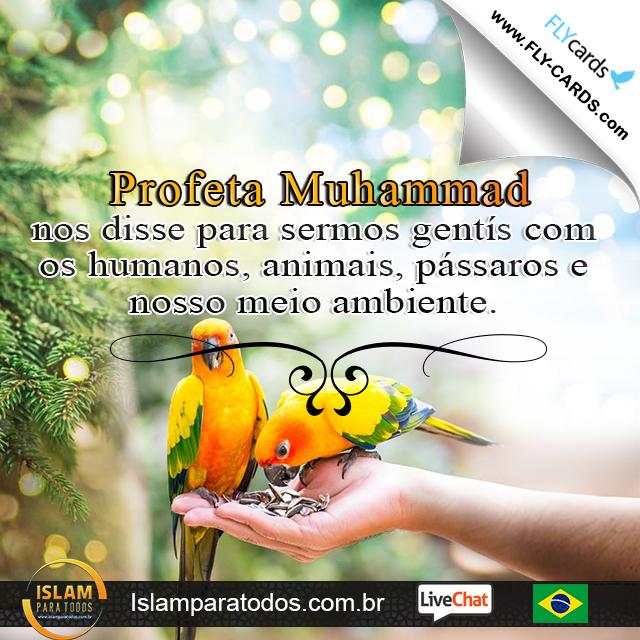Profeta Muhammad nos disse para sermos gentís com os humanos, animais, pássaros e nosso meio ambiente.