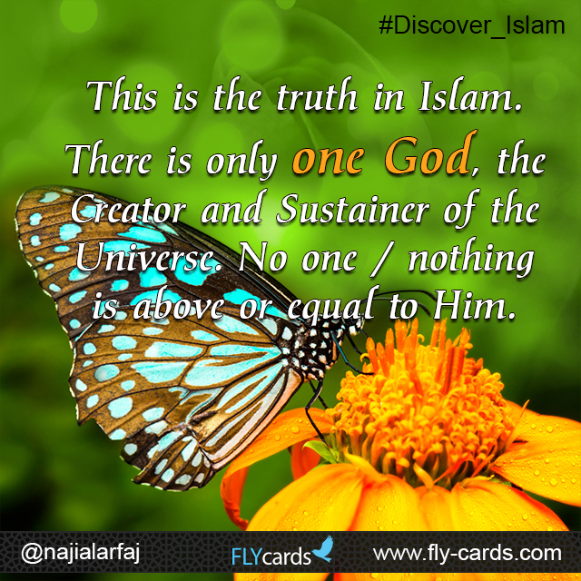The ultimate truth in Islam is: There is only one God to worship, Allah the Creator of all. No one& nothing is above or equal to Him.