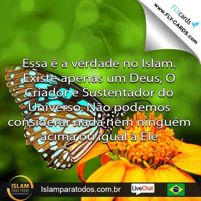 Essa é a verdade no Islam. Existe apenas um Deus, O Criador e Sustentador do Universo. Não podemos considerar nada nem ninguém acima ou igual a Ele.